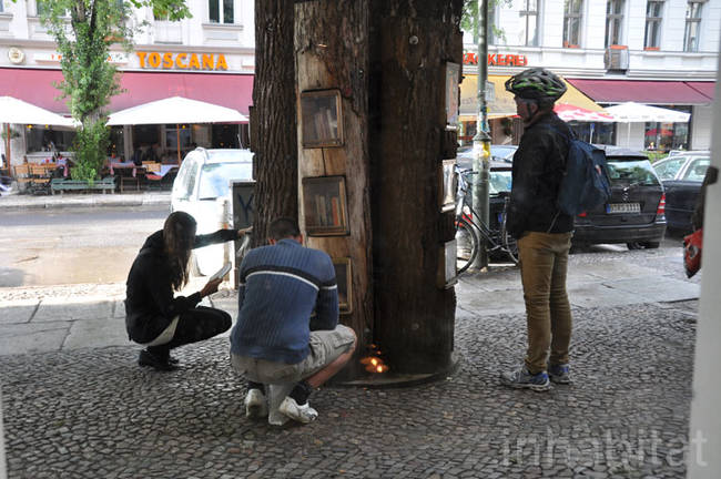 These trees are used as a free book exchange for residents in the area.